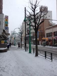 雪かき(雪の大久保通り)