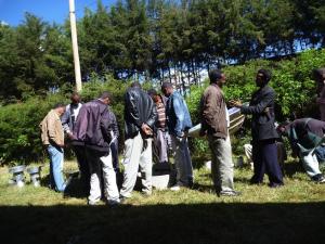 エチオピアの県庁勤務者の服装(男性のグループ)